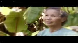 xuan nao con se ve (nhat ngan) - tuong nguyen