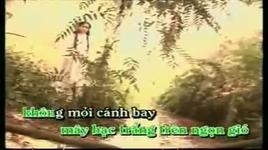 canh chim cuoi troi [music video] - minh tuyet, lam truong