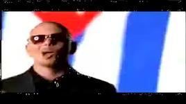 bojangles - pitbull