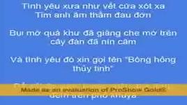 bong hong thuy tinh (handmade clip) - buc tuong