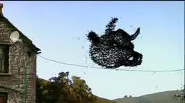 shaun the sheep (tap 13: buzz off bees) - dang cap nhat