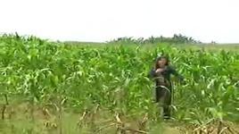 dien chau em hat (clip) - to nga