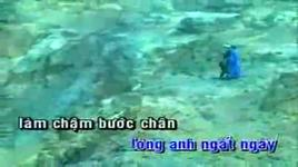 tinh don phuong 2 (karaoke) - lam truong