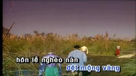ao em chua mac mot lan - truong vu