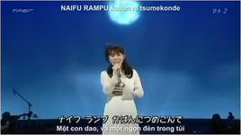 kimi wo nosete (ost laputa castle in the sky - vietsub - engsub) - picco