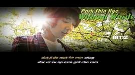without words (ost you're beautiful) - park shin hye