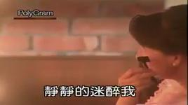 ai bu wan - andy lau (luu duc hoa)