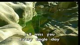 more than i can say (karaoke) - leo sayer