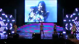 i don't care (going together concert in vietnam with 2ne1) - 2ne1
