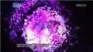 When You Wish Upon A Star (111225 SNSD's Christmas Fairy Tale)