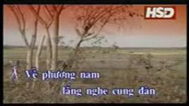 dieu buon phuong nam  - ngoc son