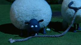 shaun the sheep  (season 1 - tap 36: the visitor) - v.a