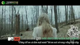 safe & sound (the hunger games ost) (vietsub) - taylor swift, the civil wars