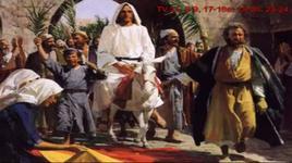 thanh vinh 21 (chua nhat le la) - v.a