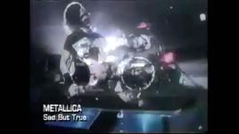 sad but true - metallica
