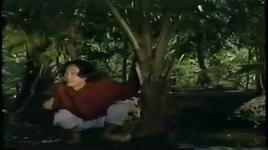 tat nuoc dau dinh - hong van (nsut), thanh loc (nsut)