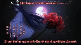 takanaru (hiiro no kakera s2 op) (vietsub, kara) - fujita maiko