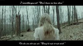 safe and sound (vietsub, kara) - taylor swift