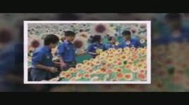 nhung doa huong duong (handmade clip) - be trieu vy