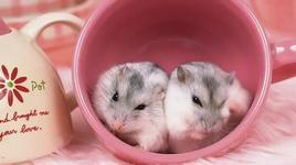 mouse love rice (lyric) - v.a