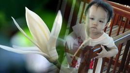 em la hoa ngoc lan (handmade clip) - thai hoa