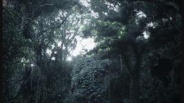 aqua terrarium - nagi yanagi