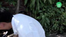 hoa su nha nang 2 - chien thang