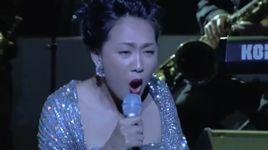 con bao (in the spotlight) - nguyen thao