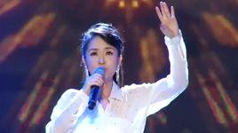 anh dung di (vietnam idol 2013) - hong nhung