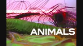 animals (lyric video) - maroon 5