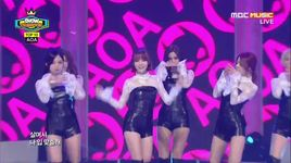 like a cat (141126 show champion) - aoa
