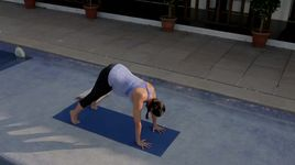 yoga ba bau - v.a