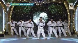 k- tiger teakwondo performance - v.a