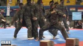 taekwondo nhung cu da dang cap the gioi p4 - v.a