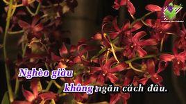 giau ngheo (karaoke) - ha vy, truong vu