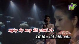 sau le bong (karaoke) - le quyen
