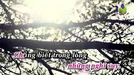dinh menh anh va em (r&b) (karaoke) - phan dinh tung, thai ngoc bich