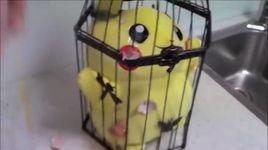 nhung tai nan hai huoc khi choi pokemon go - v.a