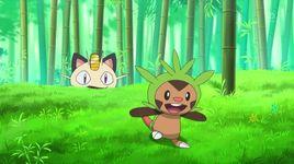pokemon xy (tap 11 - vietsub) - v.a