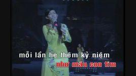 noi buon hoa phuong (karaoke) - thanh thuy