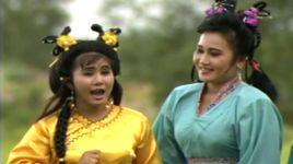 thap tam thai bao (cai luong)