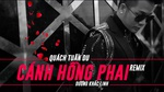 Cánh Hồng Phai Remix