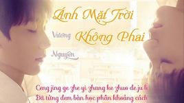 anh mat troi khong phai (vietsub) - roy wang (vuong nguyen)