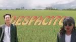 Despacito (Bolero Cover)