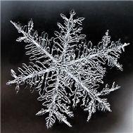 snow - v.a