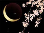 nguyet (四、月) - v.a,