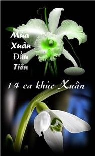 Ma Xun u Tin