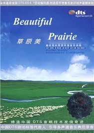 beautiful prairie - v.a