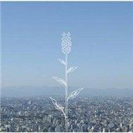 tsubomi (single) - kobukuro