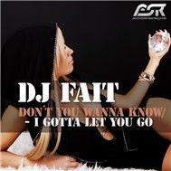 dont you wanna know... i gotta let you go (web) - dj fait
